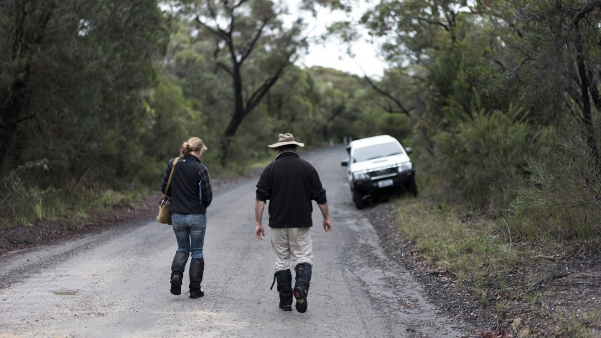Professor David Lindenmayer and Clare Crane carry out animal trapping at Booderee National Park