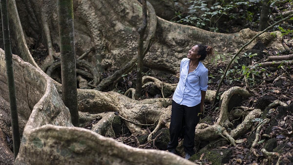 Hmalan Hunter-Xenie in Cat Tien National Park, Vietnam