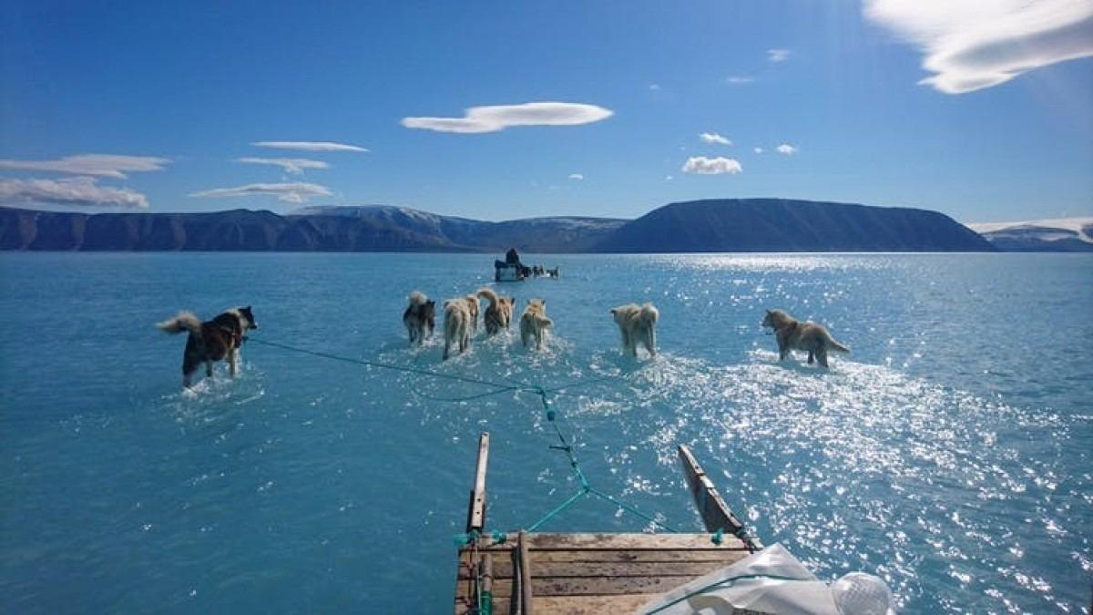 Melting on top of sea ice off northwestern Greenland