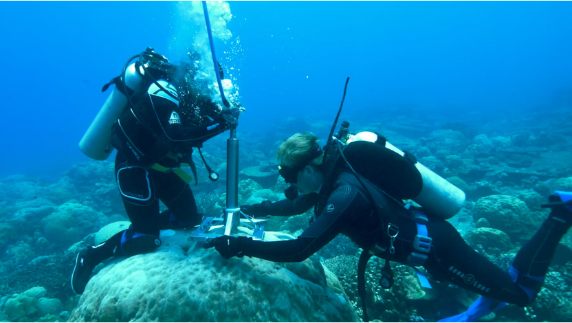 Divers underwater extracting coral core samples