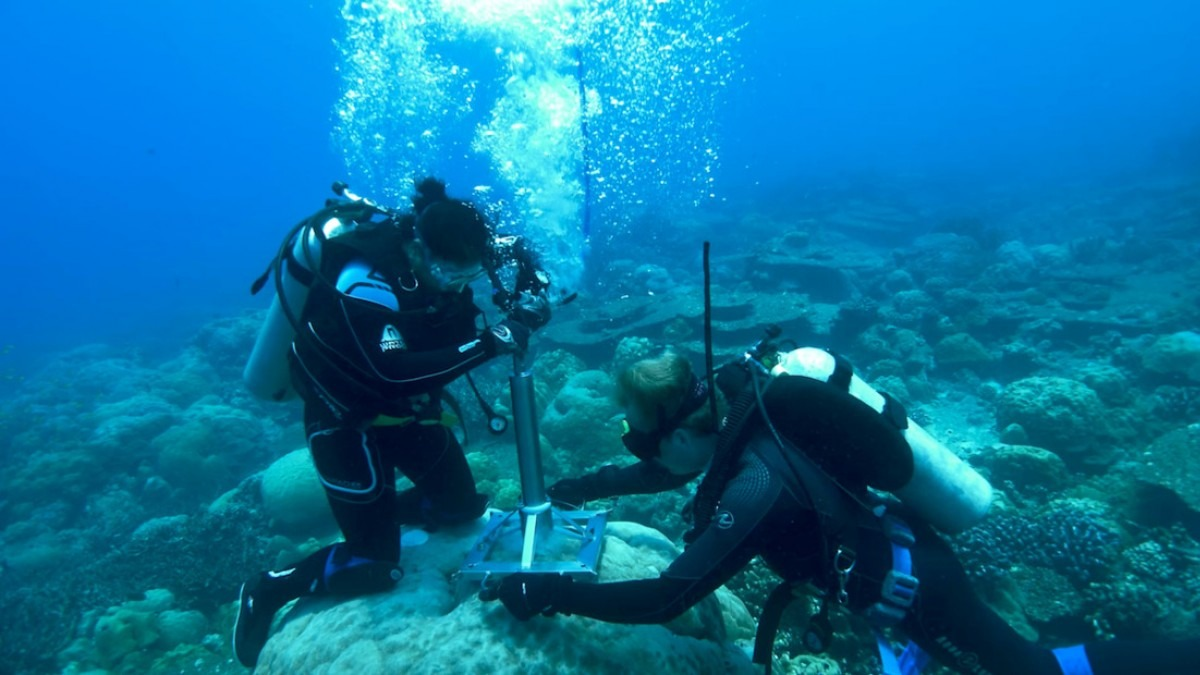 Researchers collecting coral core samples.