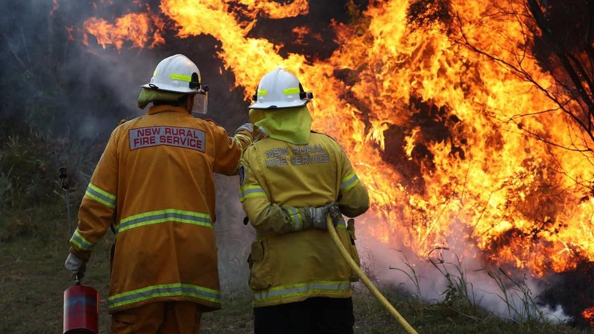 2019 was a year of unprecedented bushfires. Jason O'Brien/AAP